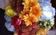Blue Flowers In Fall  22 Desktop Background
