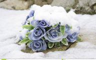 Blue Flowers In Season  23 Cool Hd Wallpaper