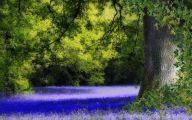 Blue Flowers Kingdom Hearts  12 Desktop Wallpaper