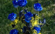 Blue Flowers On Bush  10 High Resolution Wallpaper