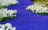 Blue Flowers On Pinterest  20 Desktop Background