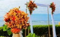 Blue Orchid Flowers Kauai  24 High Resolution Wallpaper