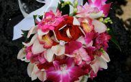 Blue Orchid Flowers Kauai  36 Wide Wallpaper