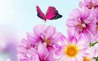Flower Background 43 Cool Hd Wallpaper
