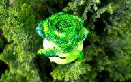 Green Flower Wallpaper 19 Cool Wallpaper