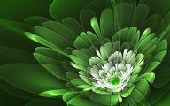 Green Flower Wallpaper 9 Widescreen Wallpaper