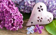 Lilac Flower Wallpaper 14 Widescreen Wallpaper