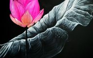 Pink Flowers Canvas  28 Desktop Wallpaper