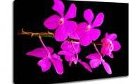 Pink Flowers Canvas  30 Hd Wallpaper