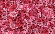 Pink Flowers Cartoon  13 High Resolution Wallpaper