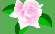 Pink Flowers Clipart  12 Wide Wallpaper