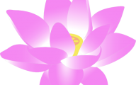 Pink Flowers Clipart  31 Free Hd Wallpaper