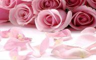 Pink Flowers Cover Photos For Facebook  12 Desktop Wallpaper
