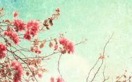 Pink Flowers Cover Photos For Facebook  29 Cool Wallpaper