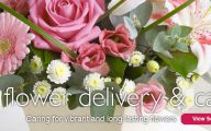 Pink Flowers Delivered  22 Cool Hd Wallpaper