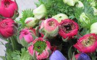 Pink Flowers Delivered  23 Desktop Wallpaper