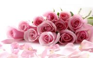 Pink Rose Wallpaper 26 Cool Wallpaper