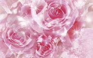 Pink Roses 34 Widescreen Wallpaper