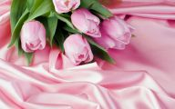 Pink Tulips 10 Cool Hd Wallpaper