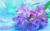 Purple Floral Wallpaper 2 Cool Hd Wallpaper