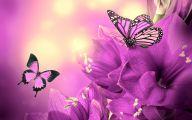 Purple Flower Wallpapers Hd 36 Free Hd Wallpaper