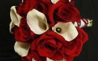 Red Calla Lilies 16 Background