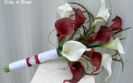 Red Flowers Calla Lily 12 Hd Wallpaper