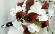 Red Flowers Calla Lily 29 Wide Wallpaper
