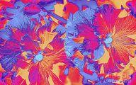 Red Pansies 18 Free Wallpaper