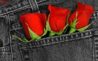 Red Rose Wallpaper For Walls 13 Widescreen Wallpaper