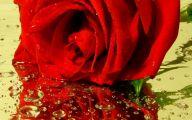 Red Rose Wallpaper For Walls 14 Desktop Wallpaper