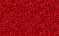 Red Rose Wallpaper For Walls 27 Desktop Wallpaper
