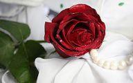 Red Rose Wallpaper For Walls 30 Desktop Background
