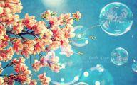 Spring Flowers Wallpaper 2 Wide Wallpaper