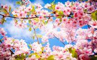Spring Flowers Wallpaper 5 Free Hd Wallpaper