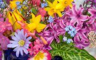 Spring Flowers Wallpaper 7 Cool Wallpaper