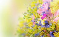 Summer Flowers Wallpaper 40 Widescreen Wallpaper