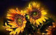 Sunflower Wallpaper 27 Desktop Wallpaper