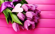 Tulip Purple Wallpaper 7 Cool Hd Wallpaper