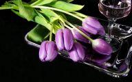 Tulip Purple Wallpaper 8 Hd Wallpaper