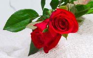 Wallpaper Of Flowers Red Rose 17 Hd Wallpaper