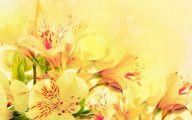 Yellow Flower Wallpaper 2 Widescreen Wallpaper