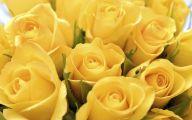 Yellow Roses 34 Desktop Background