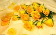 Yellow Roses 5 Background Wallpaper