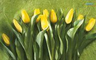 Yellow Tulips 2 Widescreen Wallpaper
