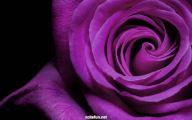 Beautiful Dark Flowers  6 Background