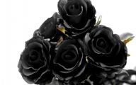 Black Flowers Pictures 3 Desktop Background