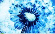 Blue Dandelion 33 Background