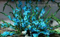 Blue Flowers For Floral Arrangements  12 Background
