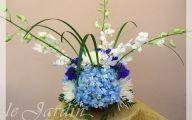 Blue Flowers For Floral Arrangements  23 Free Hd Wallpaper